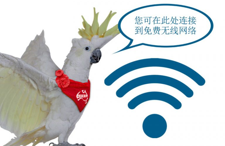 You can find free Wi Fi at this location 1 188 768x499